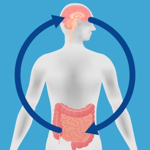 The human gut and brain are in direct communication with each other