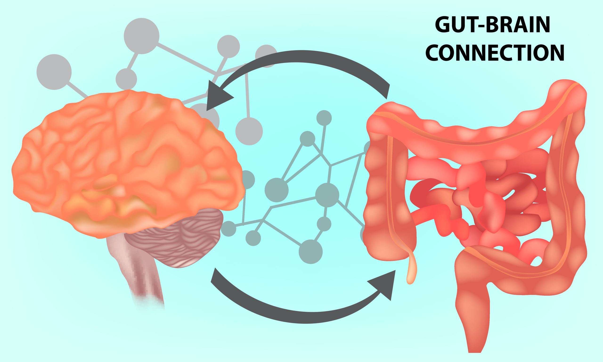 Disorders of the Gut-Brain Interaction